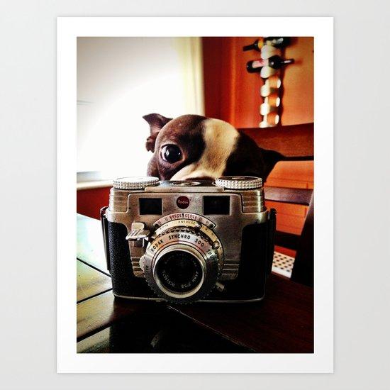 Terrier has an eye for photography Art Print