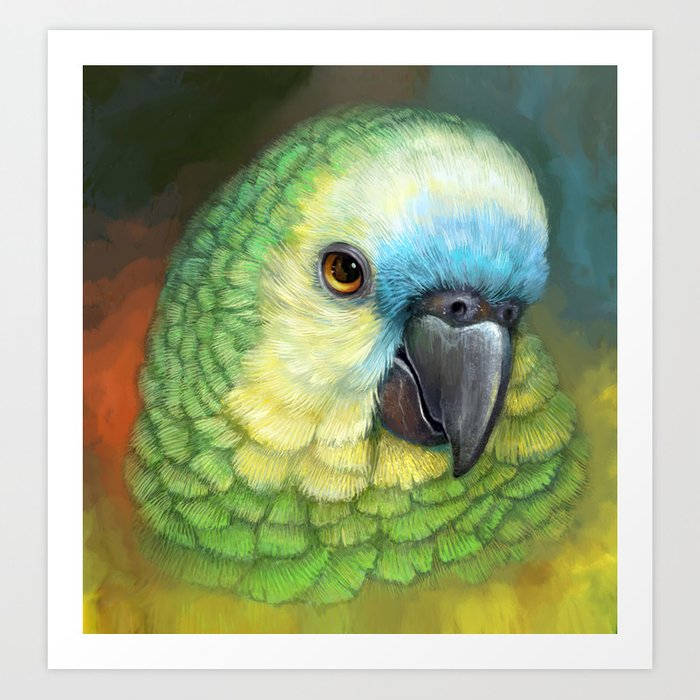 Blue Fronted Amazon Parrot Realistic Painting Art Print By