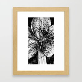 Look into my eyes Framed Art Print