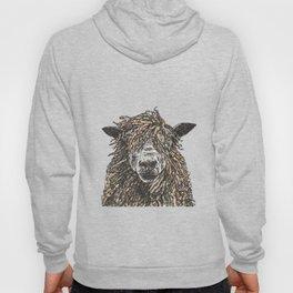 Cotswold Sheep Hoody