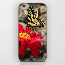 Butterfly Magic iPhone Skin