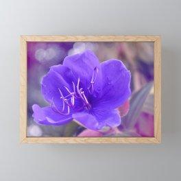 Melancholy violet by #Bizzartino Framed Mini Art Print