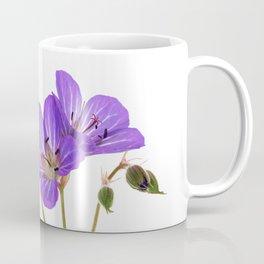 Cranesbill (Geranium pratense) - Minimalist flower photograph Coffee Mug