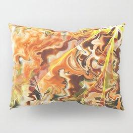 Degenerated Motion Pillow Sham
