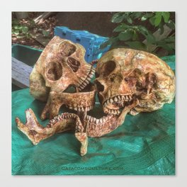 Catacomb Culture - Human Skulls Canvas Print