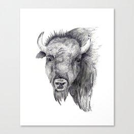 Bison Art Canvas Print