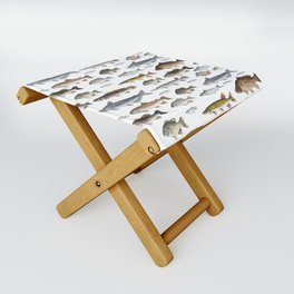 A Few Freshwater Fish Folding Stool