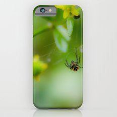 Casting lines Slim Case iPhone 6s