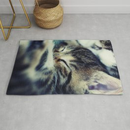 Sleeping Tiger Rug
