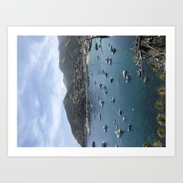 Catalina Island Art Print