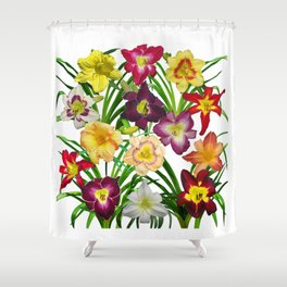 Display of daylilies I Shower Curtain
