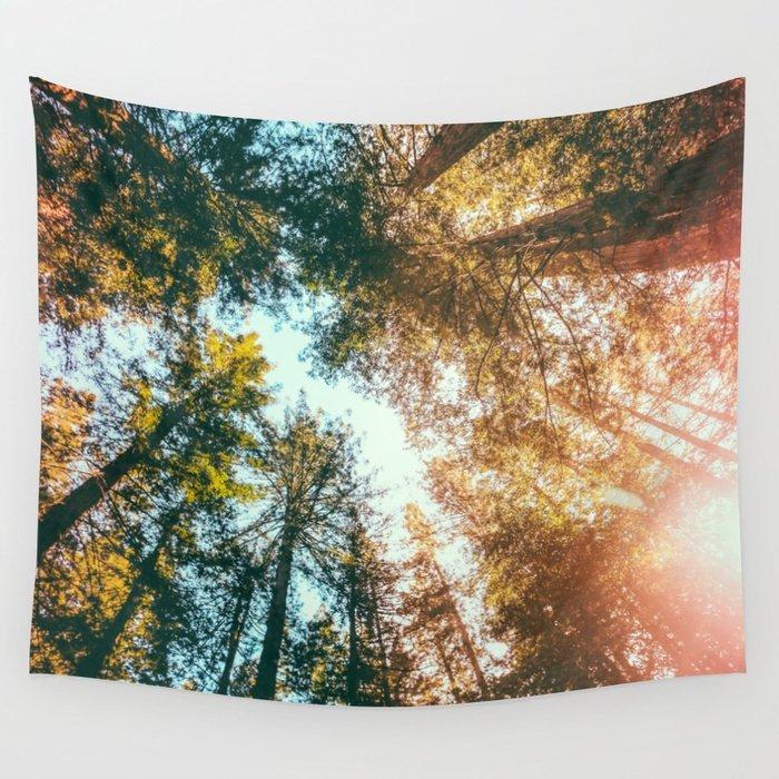 California Redwoods Sun-rays and Sky Tapestry by Elena Kulikova Editions