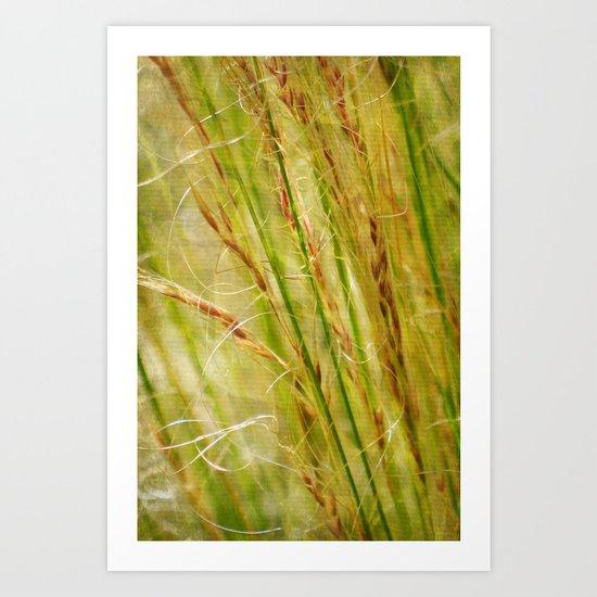 Golden Grasses - JUSTART © Art Print