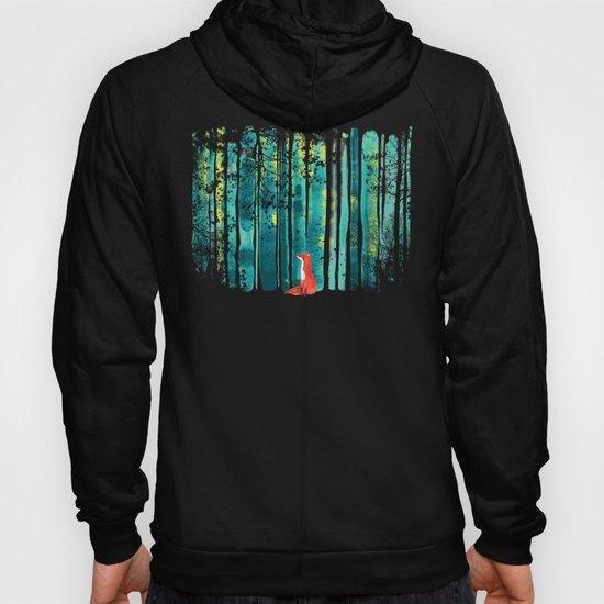 Fox in quiet forest by budikwan