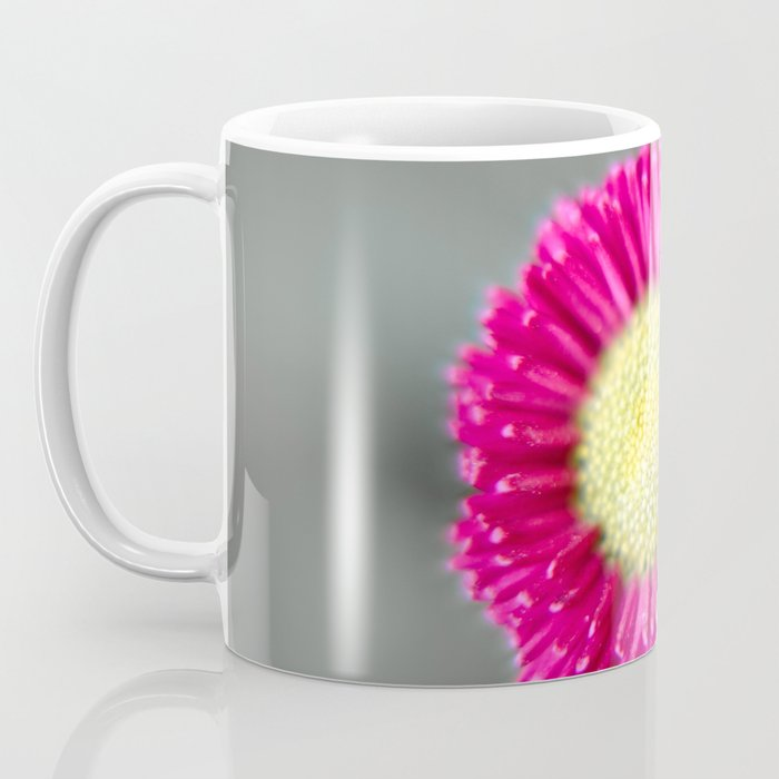 Blossom from a Daisy Isolated on Gray Background Coffee Mug