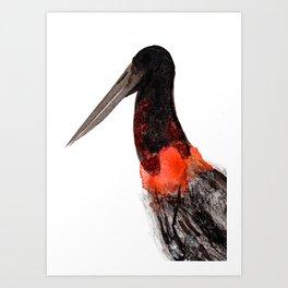 Jabiru - Pantanal em Chamas Art Print
