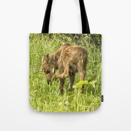 Itchy Nose or Smelly Feet? Tote Bag
