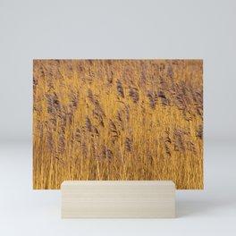 Reeds Mini Art Print