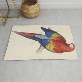 Vintage Illustration of a Macaw Parrot (1832) Rug