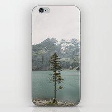 Lone Switzerland Tree - Landscape Photography iPhone & iPod Skin
