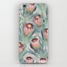Pale Painted Protea Neriifolia iPhone & iPod Skin