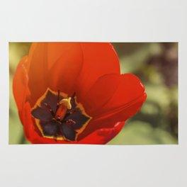 red tulip blossom Rug