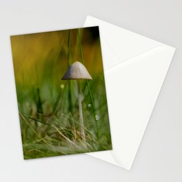 Fragile Beauty Stationery Cards