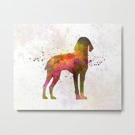 Auvergne Pointer in watercolor Metal Print
