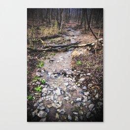 Little Creek Canvas Print