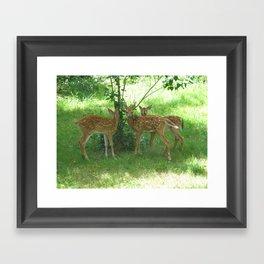 Younglings Framed Art Print