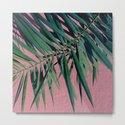 Palm Leaves by plantpedia