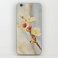 Almond Blossoms in the Wind iPhone & iPod Skin