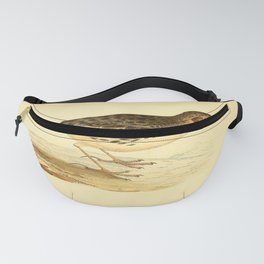 Red throated Pipit Fanny Pack