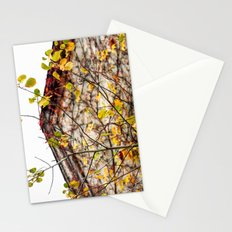 Somewhere in Rhode Island - Abandoned Mill 003 Stationery Cards