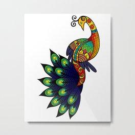 Coy peacock Metal Print