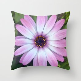 Pink Calendula Throw Pillow