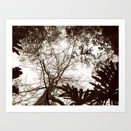 Memories of Endor 2 (B&W) Art Print