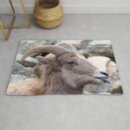 Watercolor Sheep, Bighorn Juvenile 01, Drake, Colorado, The Joker Rug