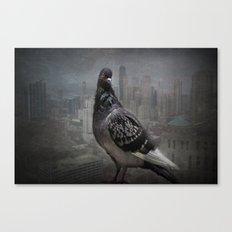 City Dweller Canvas Print