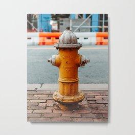 Fire Hydrant - Old Town Alexandria, Va Metal Print