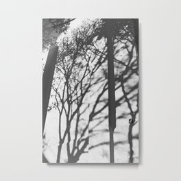 Tree Shadows - Solarized Metal Print