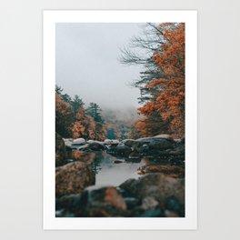 Timeless Autumn Art Print