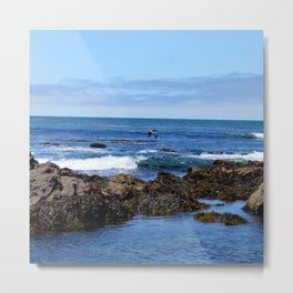Rocky California Tide Pool Metal Print