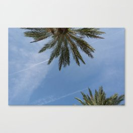 skies and highs Canvas Print