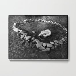 Remain in the center Metal Print