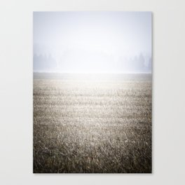 The Lawn Canvas Print
