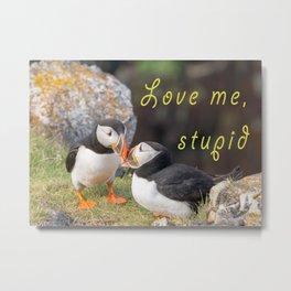 Love me, stupid! Metal Print