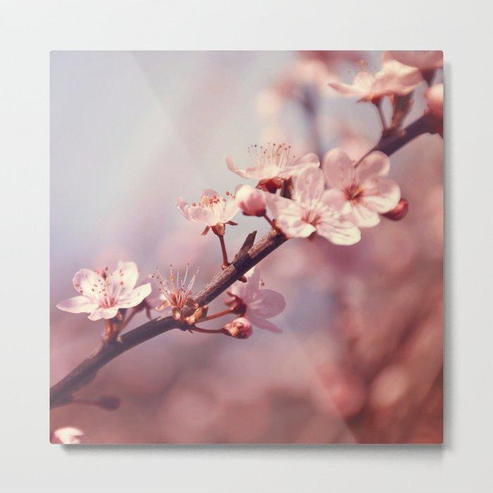 Joyful Pixie Cherry Blossom Metal Print