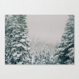 Snow Storm Canvas Print