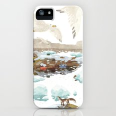 Greenland Slim Case iPhone (5, 5s)